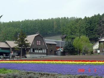 Farm 富田1.jpg